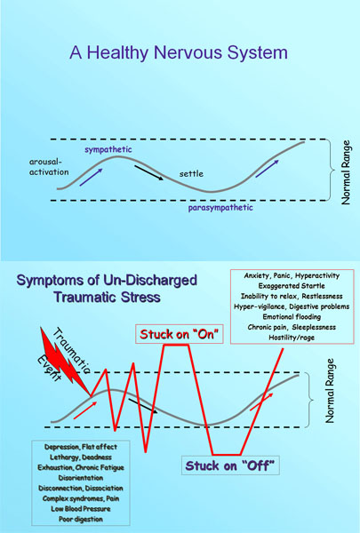 When not processed properly, trauma can result in a recurring pattern of reactions to stress that run outside of the normal range experienced in a healthy nervous system. Jane and Patricia explain more in the workshop about these graphs from the Somatic Experiencing Trauma Institute's website. [http://www.traumahealing.com/somatic-experiencing/]